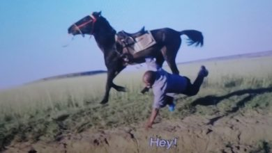 Photo of Cheater Falls Off The Horse On Uya Jola 9/9 Leaving Viewers In Stitches